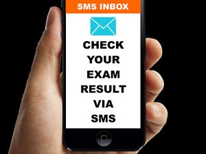 Computer based Students' Result Dissemination System using SMS messaging